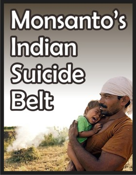 monsanto case india Monsanto company - doing business in india  description access to case  studies expires six months after purchase date publication date:.