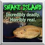 Popcorn- Snake Island
