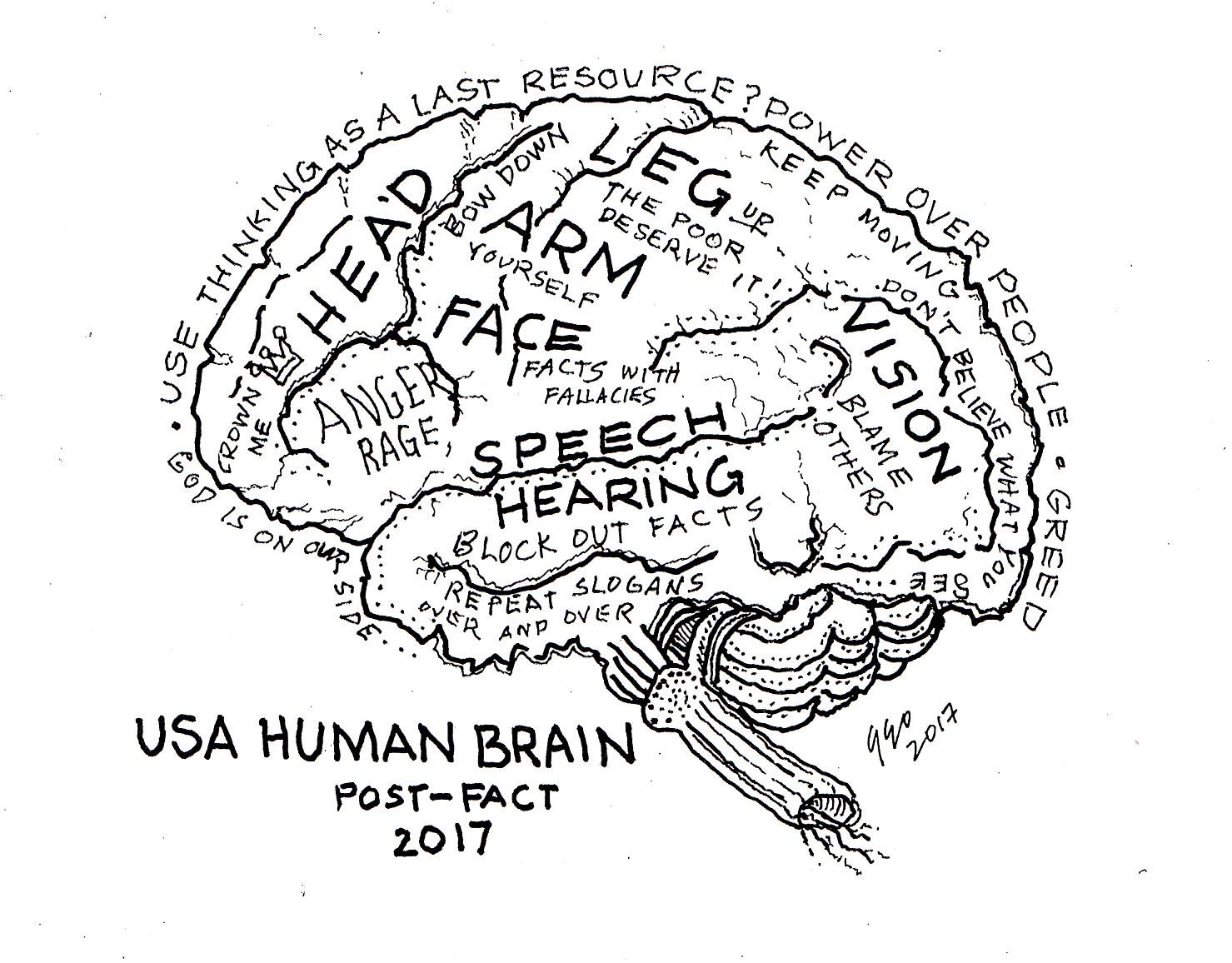 GeoK- Brain